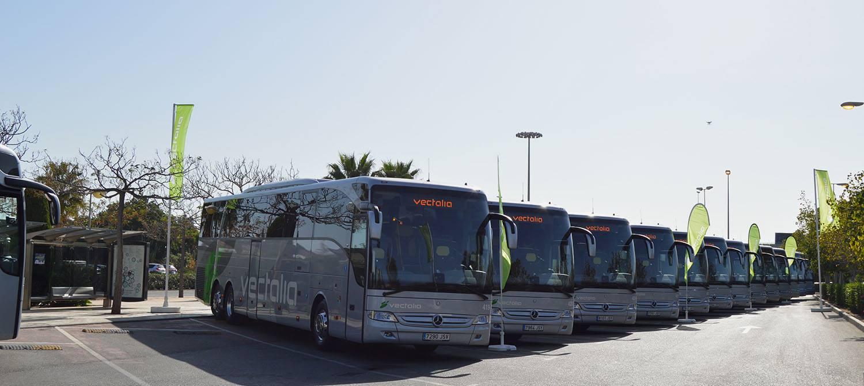 alquiler de autobuses en Murcia
